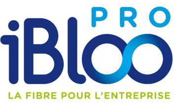 logo de Ibloo Pro